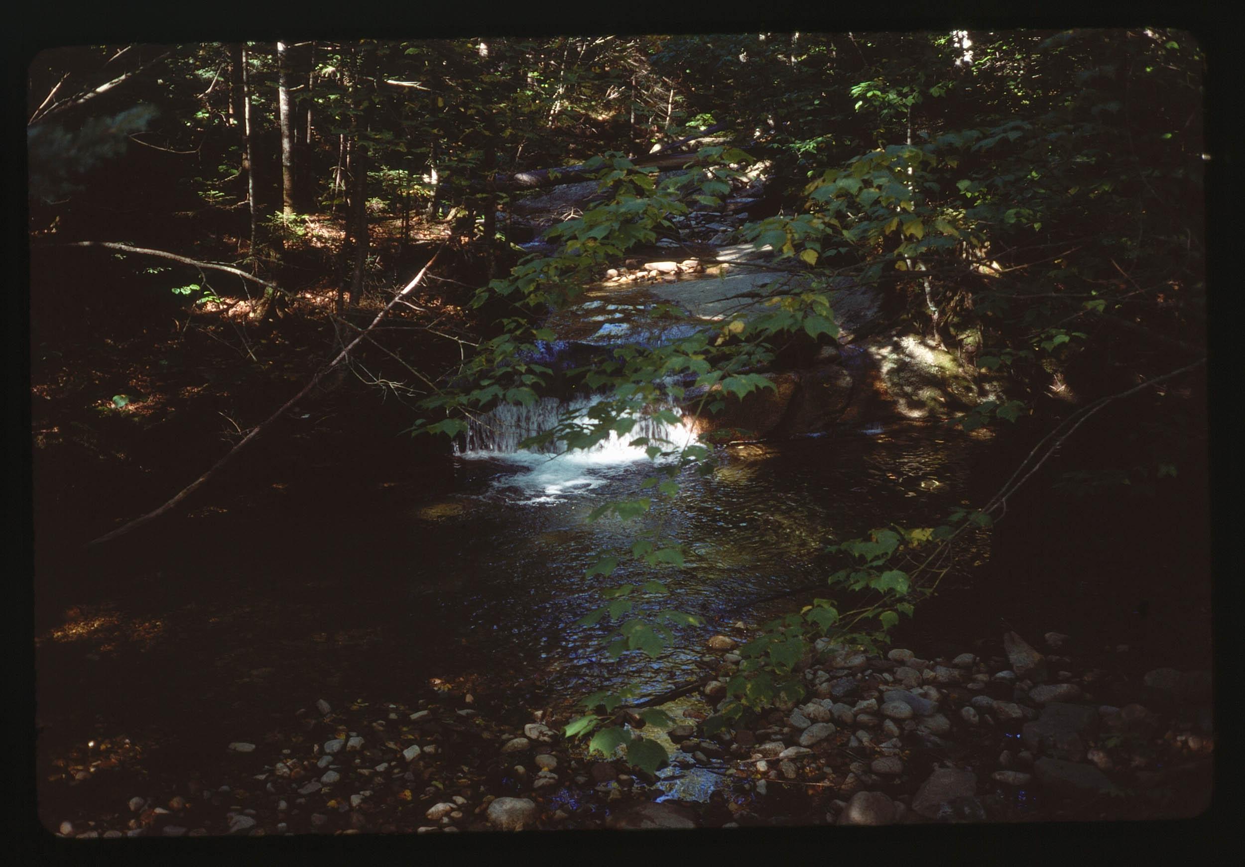 VAC1990-CANADA_21.jpg