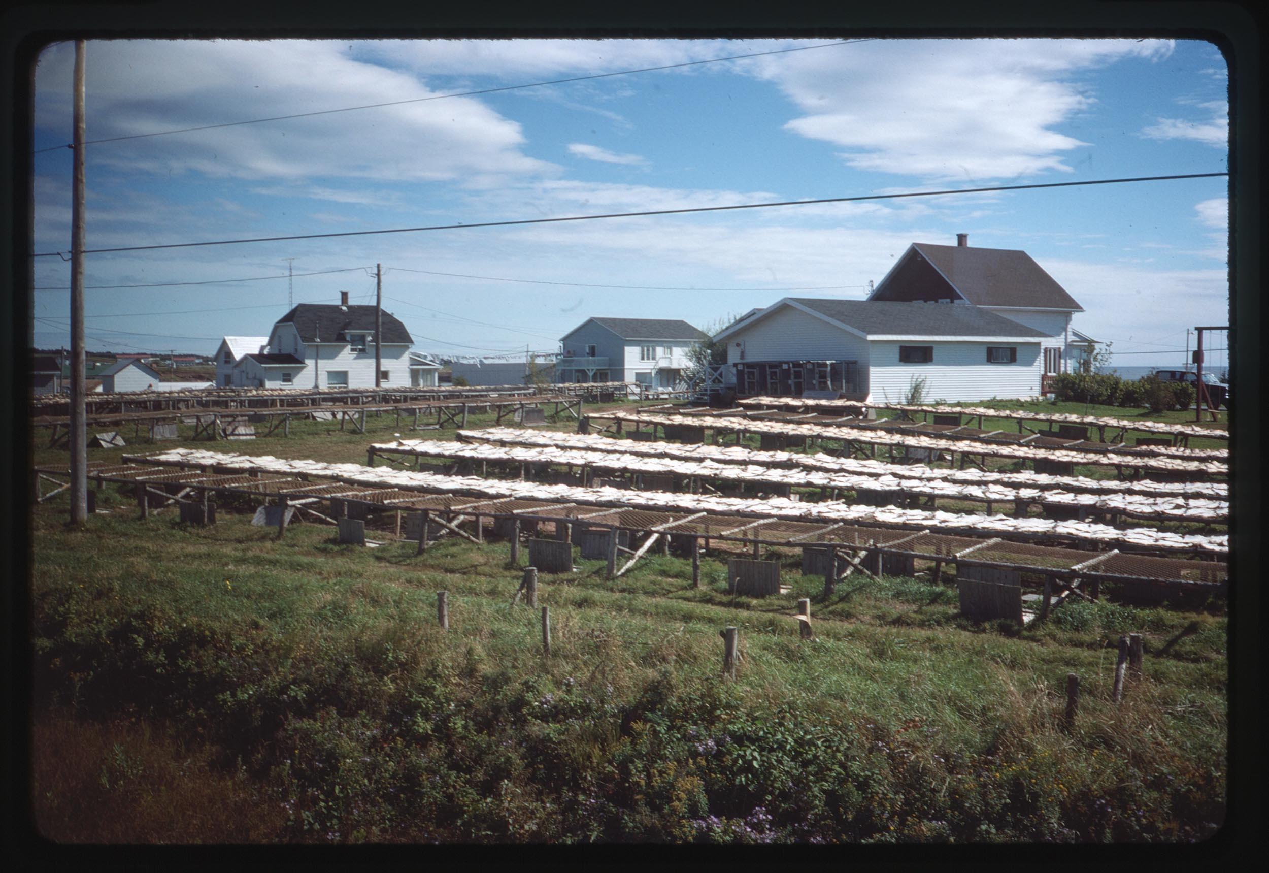 VAC1990-CANADA_38.jpg