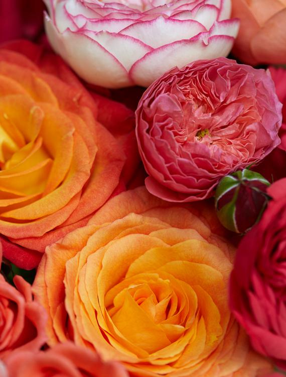 061511_flowers_248.jpg