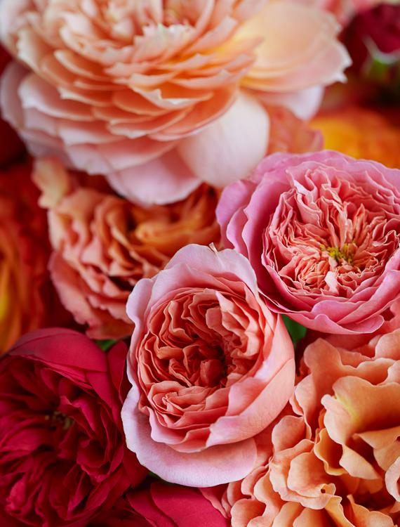 061511_flowers_243_RET.jpg