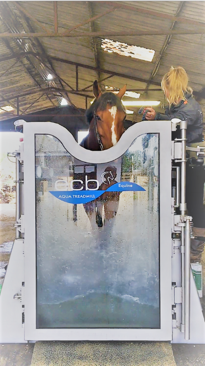 ECB aqua treadmill install at dressage riders Anders Dahl & Fiona Bigwood