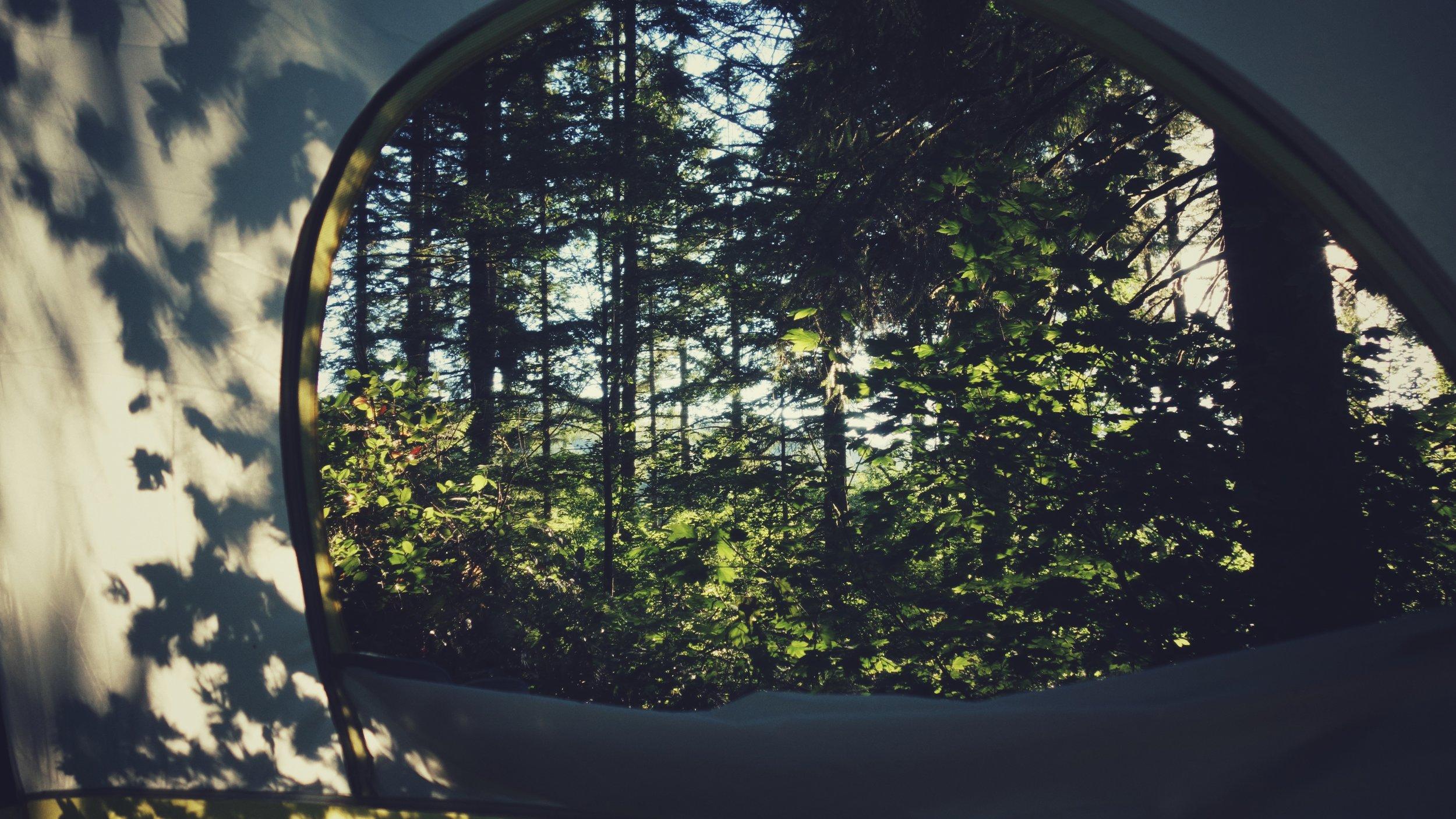 My bedroom window.