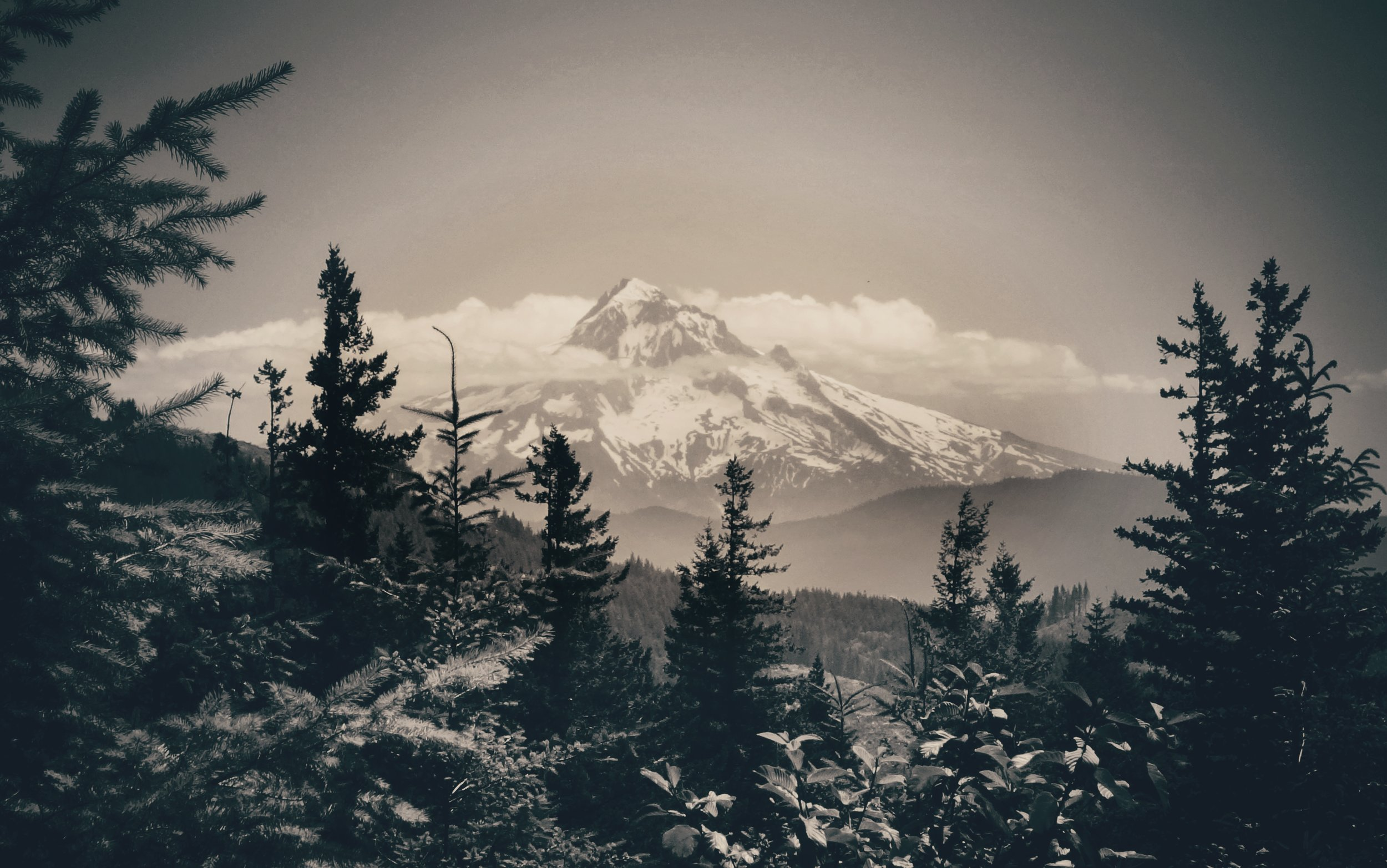 A view of Mt. Hood near our campsite.