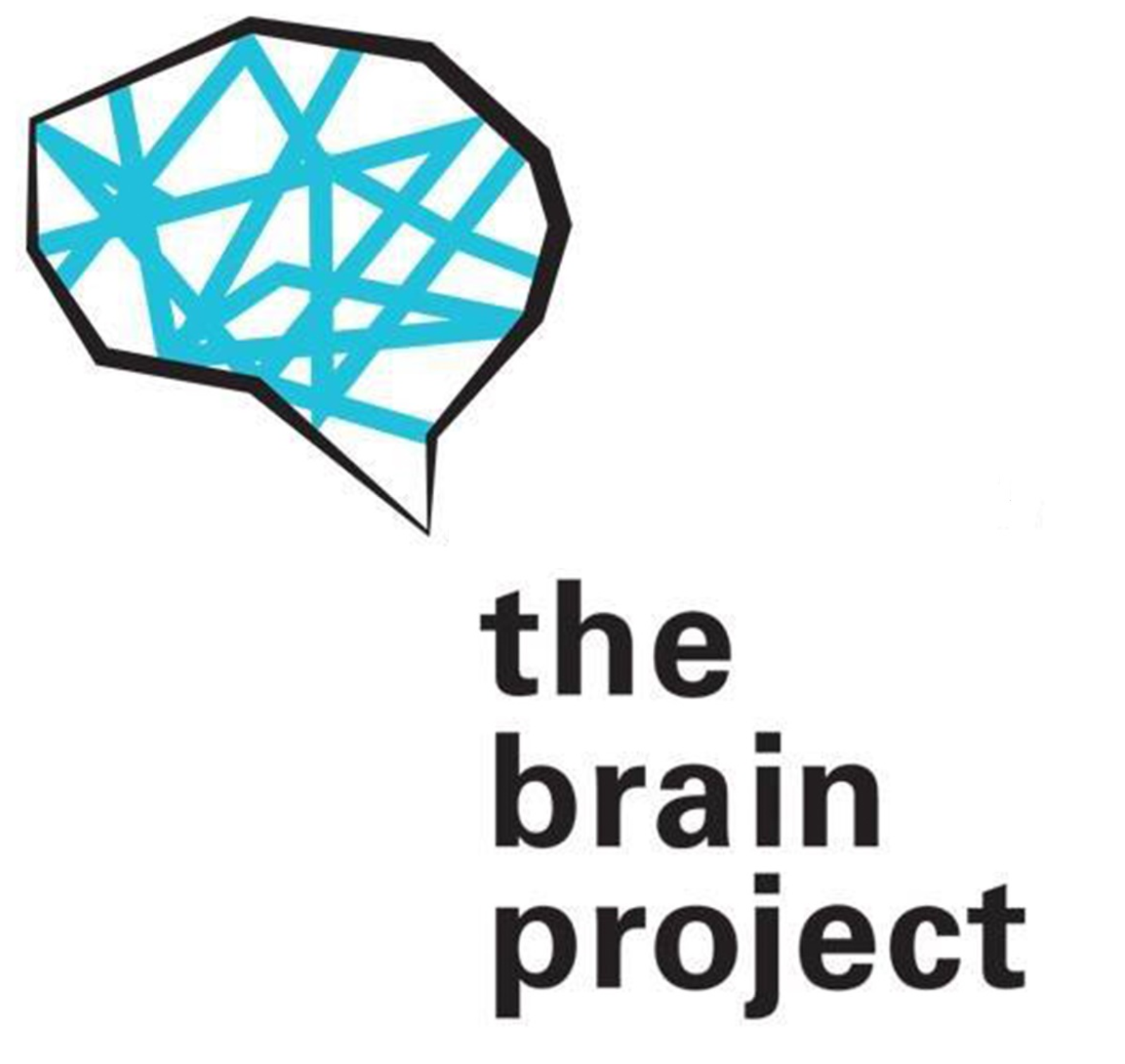 The Brain Project - edition 2017