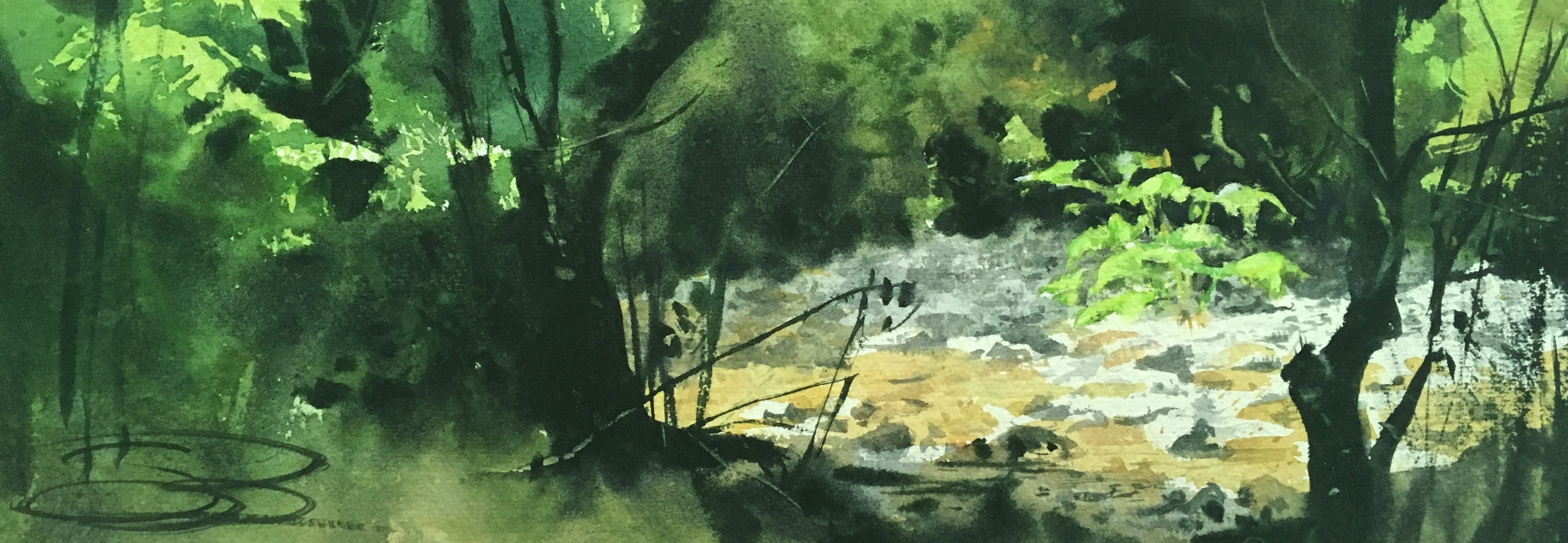 """dry creek, Muir Woods"", 5 x 15, 250$"