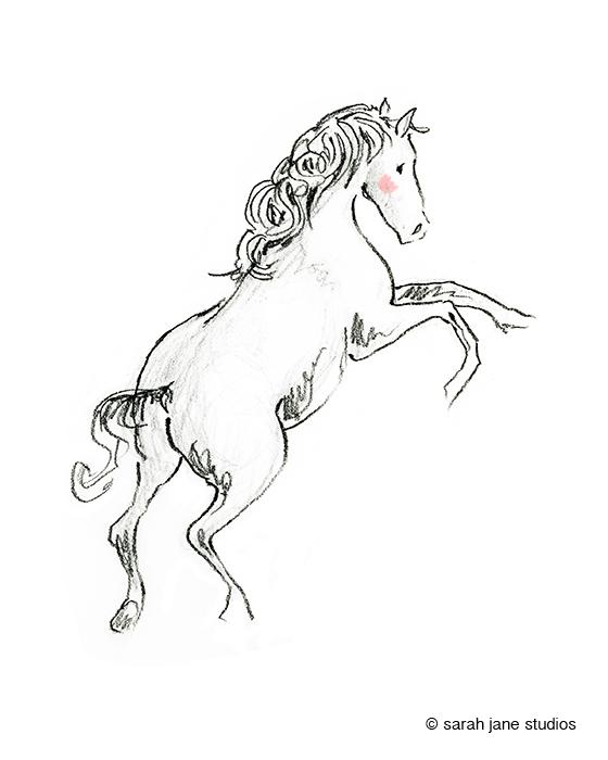 wild horse 2.shop