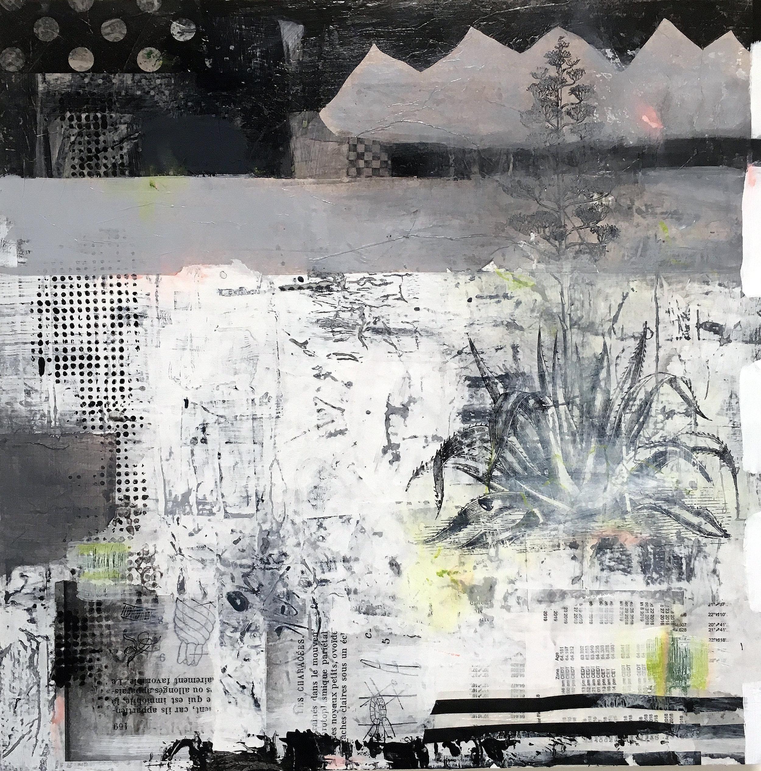 "Pinos Altos 24"" x 24""  2017 Acrylic, paper on panel"