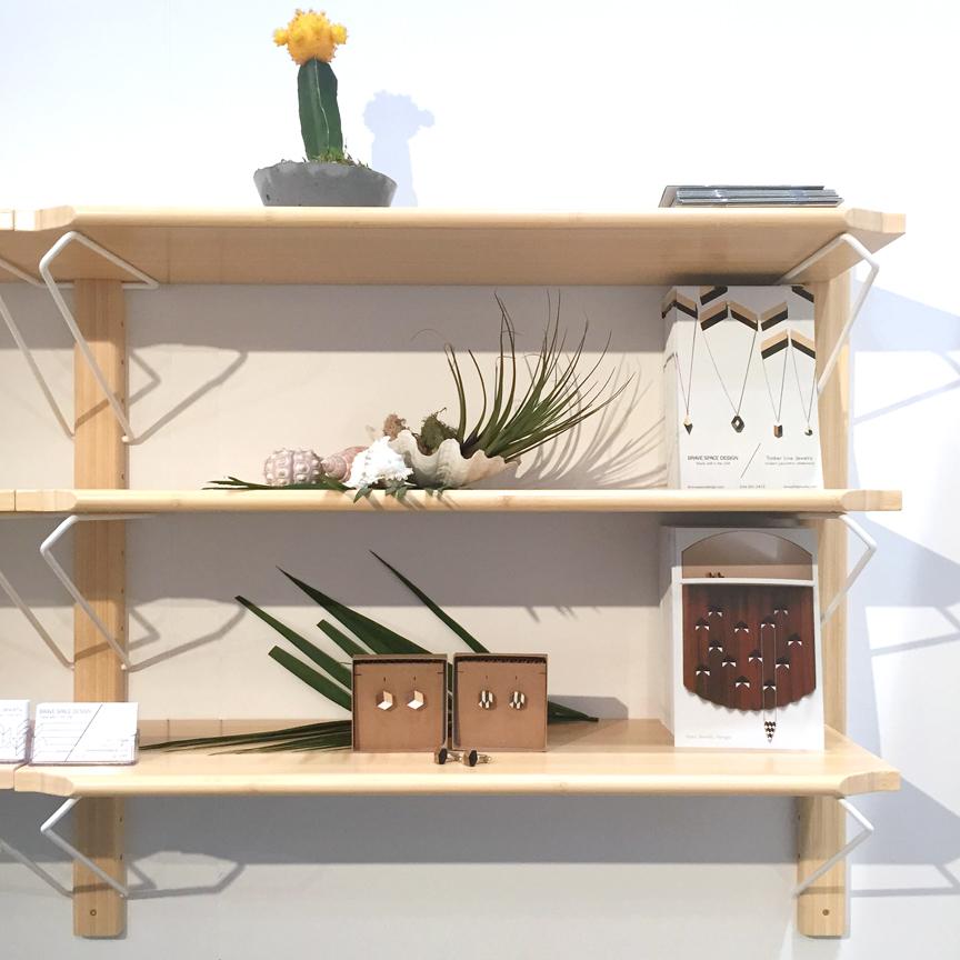 shelves_cacti_edit.jpg