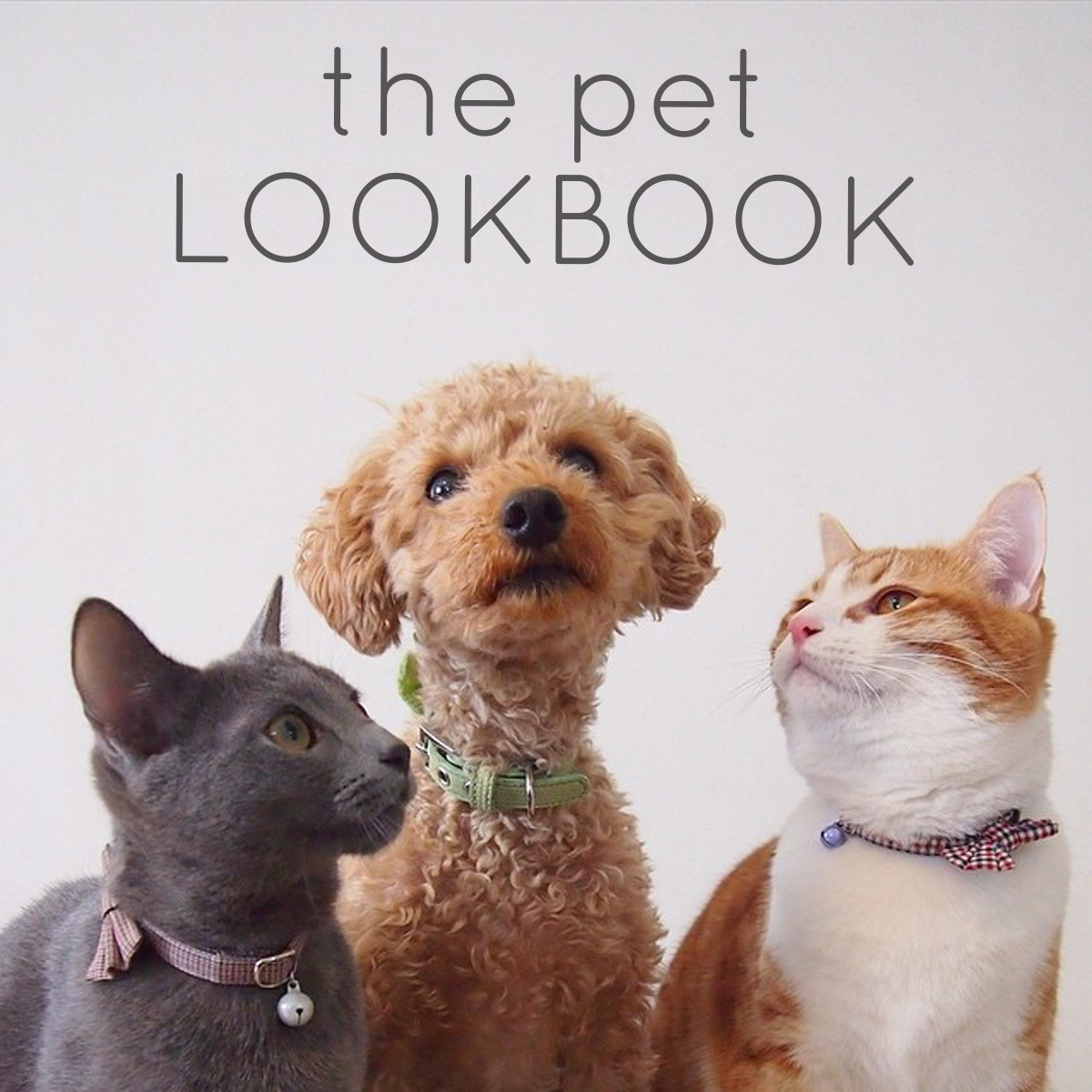 pet=lookbook-cover1.jpg