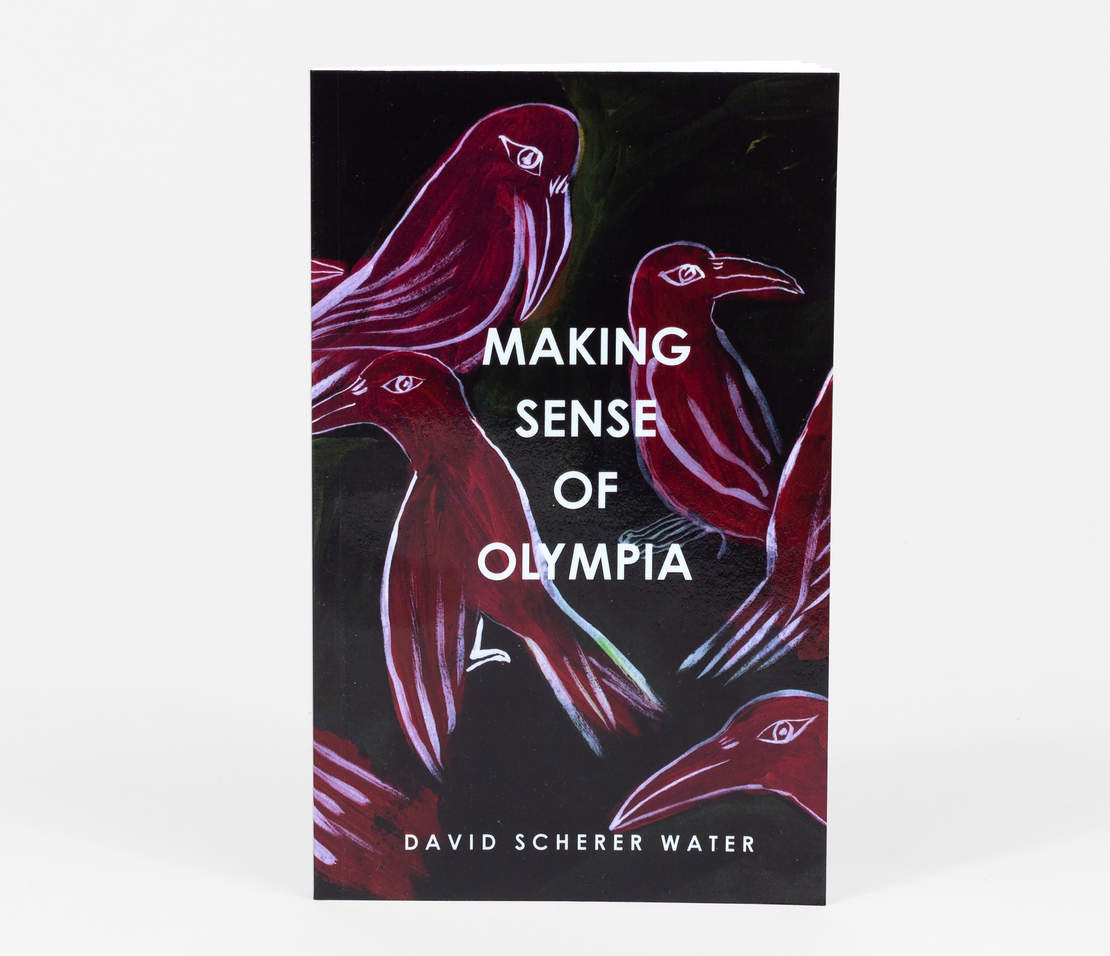 Buy David Scherer Water's book here!