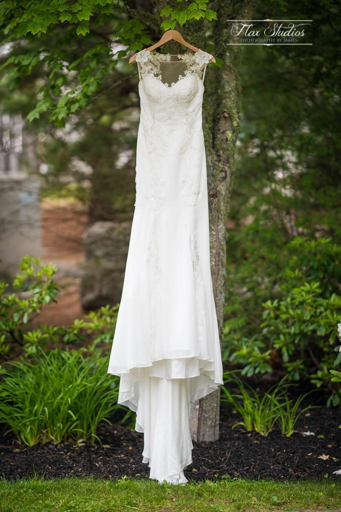 Wedding Dress hanging in tree SPI