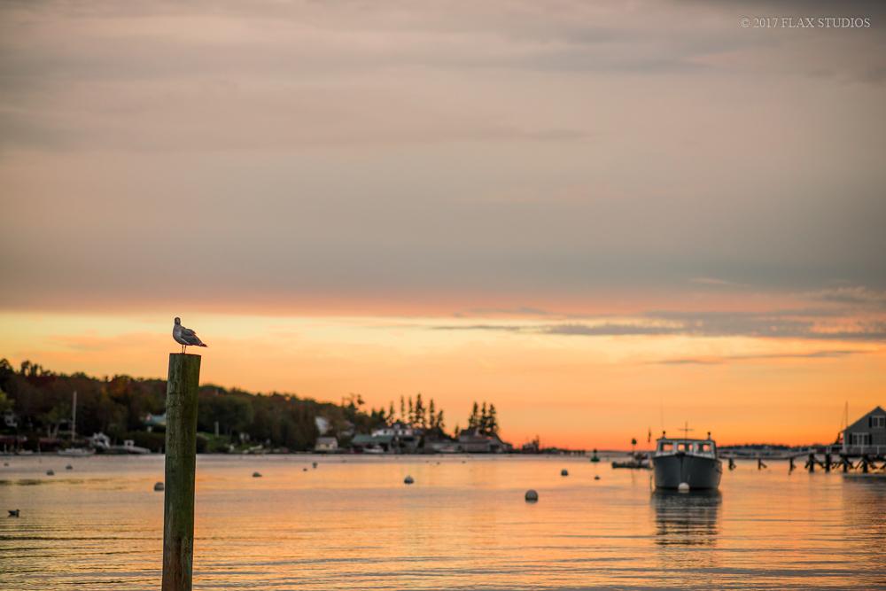 Boothbay Harbor Maine Event Photographers-22.JPG
