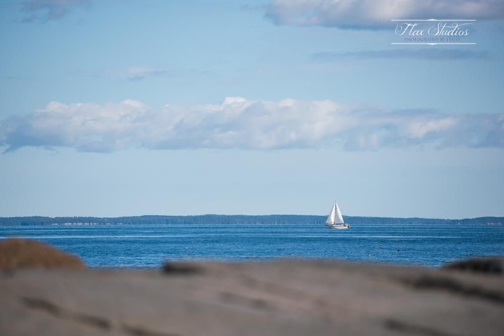 sailboats in rockland harbor