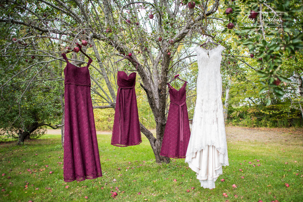 wedding dresses hanging in the trees