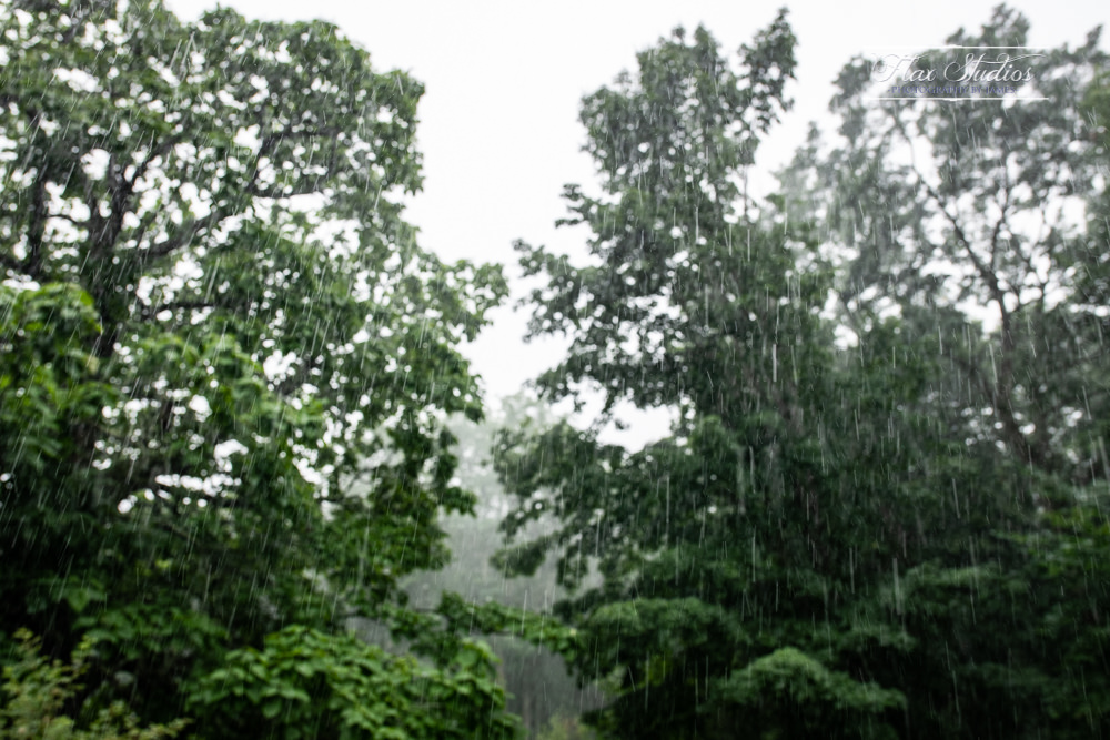 wedding day rainy forecast