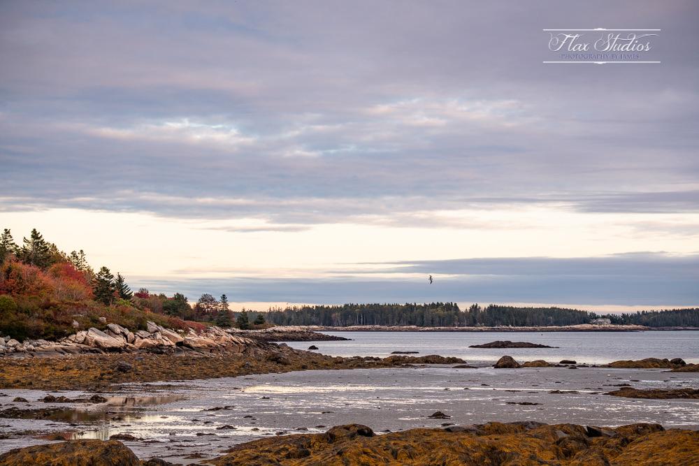 Clark Island Maine Wedding Photographer-24.jpg