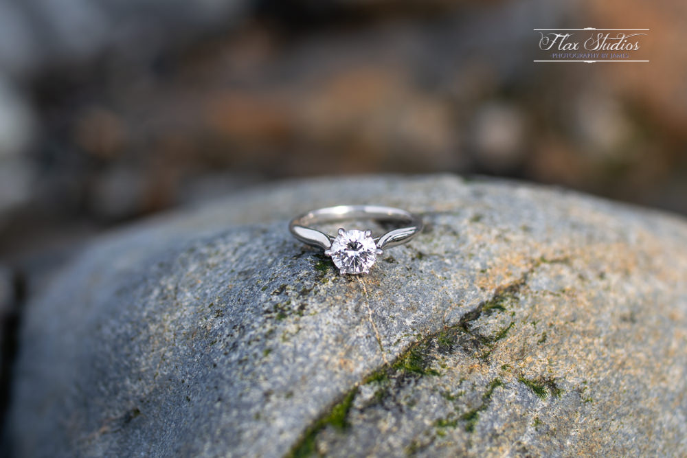 Owls Head State Park Engagement Photos-8.jpg