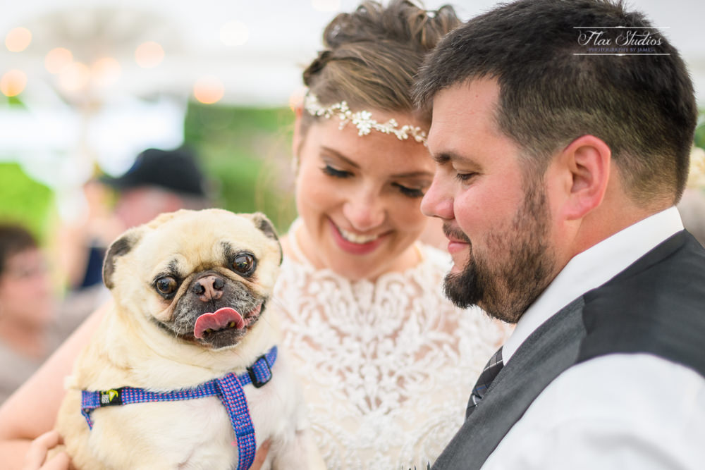bride and groom dancing with their pug during the reception