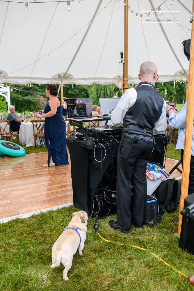 1812 Farm Wedding Photos-180.jpg