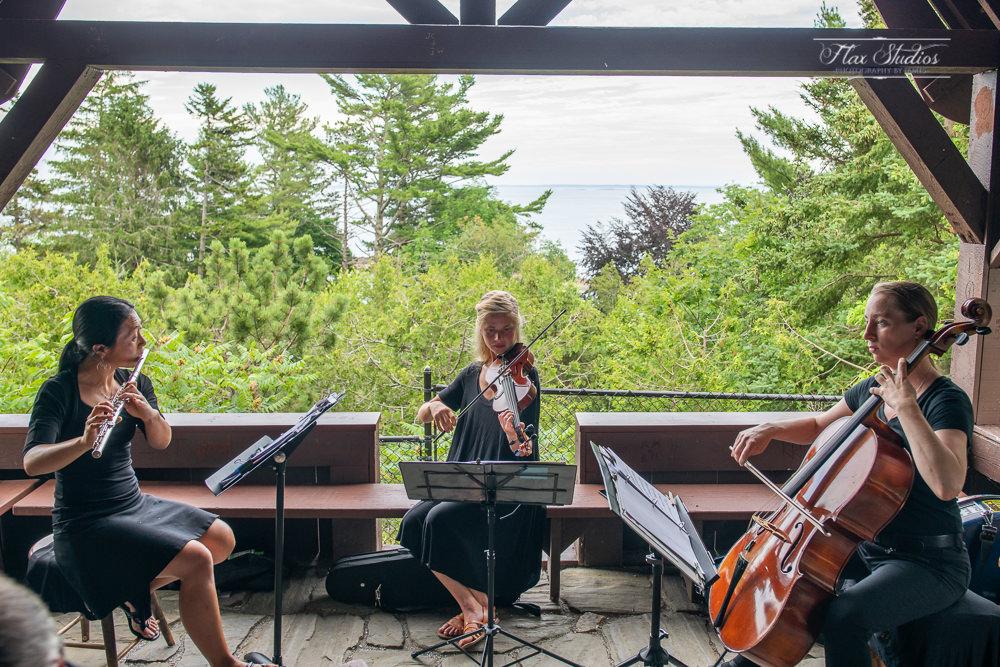 windfern musicians