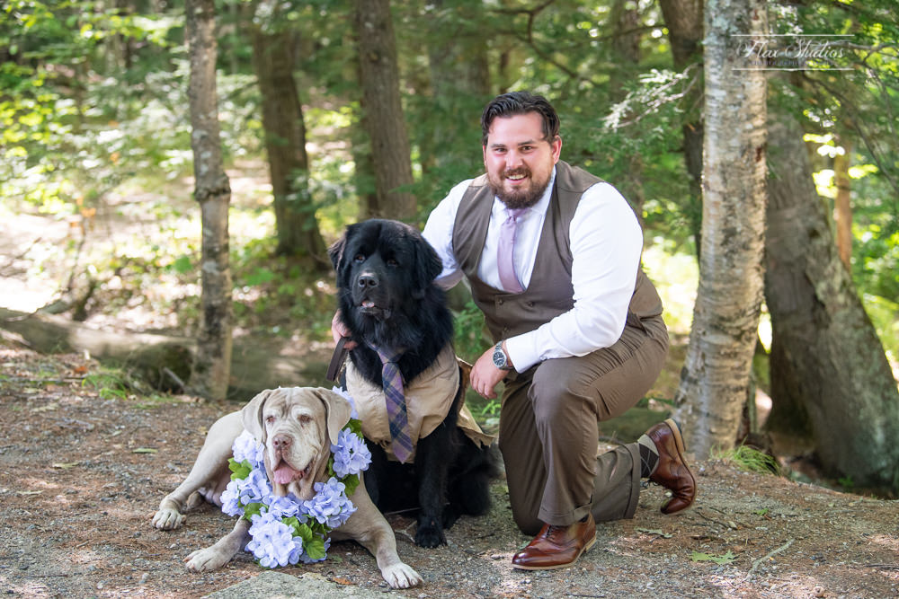 groom with his dogs