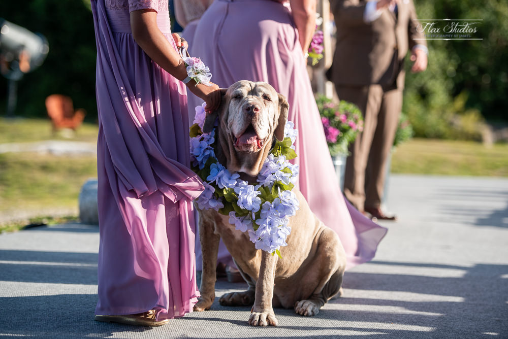 Sunday River Newry Maine Wedding Photography-57.jpg