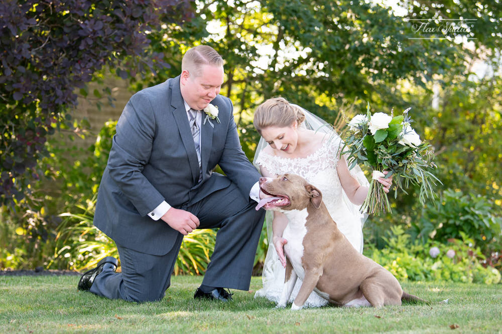 formal wedding photos with dog