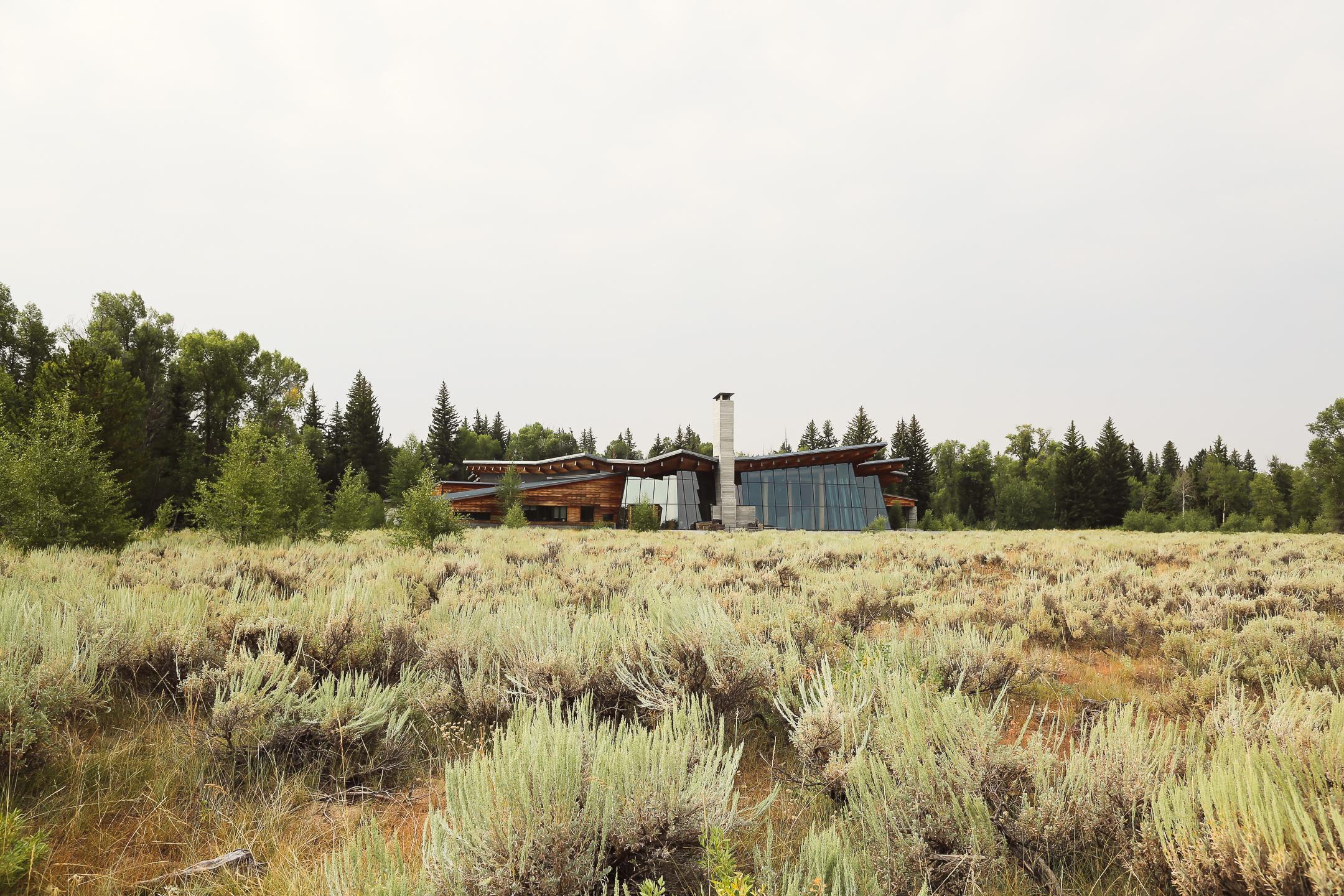 Yellowstone-2.jpg
