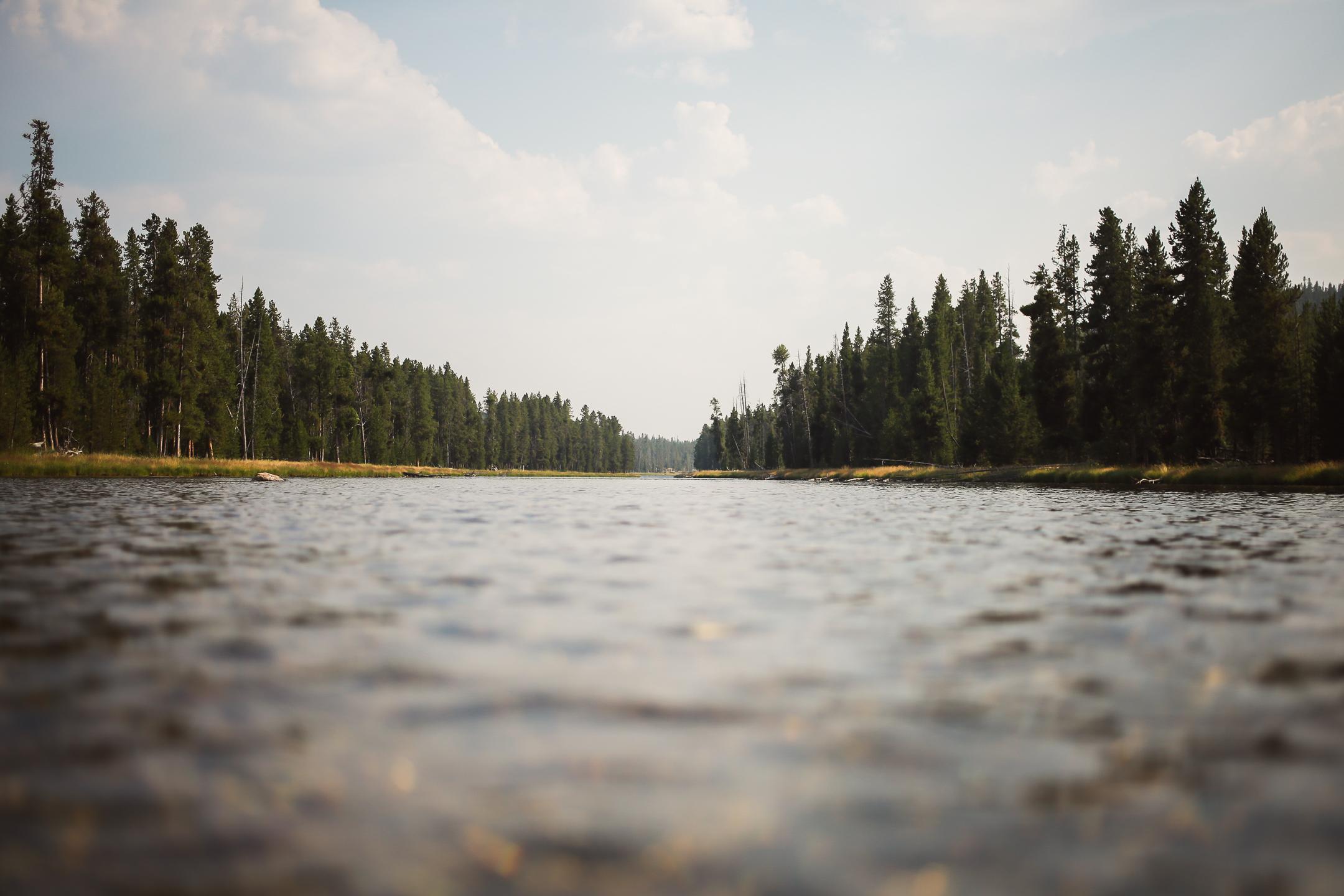 Yellowstone-47.jpg