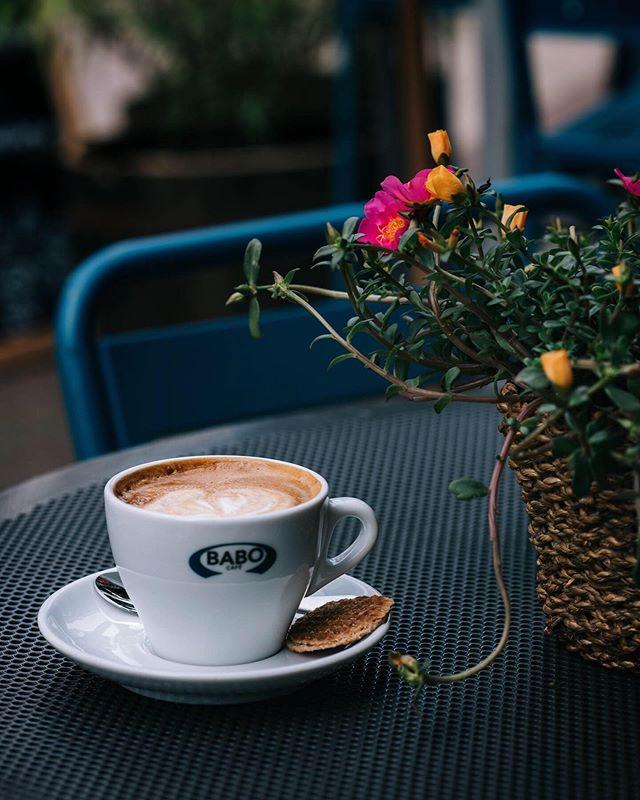 Heerlijk koffiegedronken in Arnhem bij @Babocafe #flatwhites en de taarten waren ook heel lekker ! . . . . . . . . . . . #cafehop #cafeteller #koffiepauze #coffeeonthetable #coffeetized #koffeecollective #coffeemoments #spcafephoto #coffeeteller #koffiebonen #koffietijd #koffiebranderij #coffeeinsta #igerscoffee #coffeexample #coffeephotography #coffeeeee #koffiedrinken #coffeecups #coffeeandcookies #coffees #thingsaboutcoffee♥️ #dailycoffee #coffeee #coffeeig #instacoffe #coffee_time #timeforcoffee #getcoffeebehappy