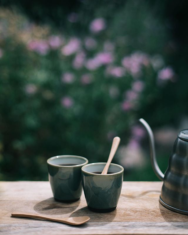 A tiny moment of sunshine outside...just love to be in the garden & drink some coffee after making the pictures. . . . . . . . . . . . #spcafephoto #coffeeteller #coffegram #igerscoffee #coffeexample #coffeephotography #coffeeeee #koffiedrinken #coffeecups #todaymycoffee #coffeislove #dailycoffee #coffeee #coffeeig #instacoffe #coffee_time #thingsaboutcoffee #caffinefix #getcoffeebehappy #ig_coffee #morningcoffeetime #coffeephotos #koffiebonen #koffietijd #koffiepauze #coffeeathome #coffeeonthetable #coffeetized #koffeecollective #coffeemoments