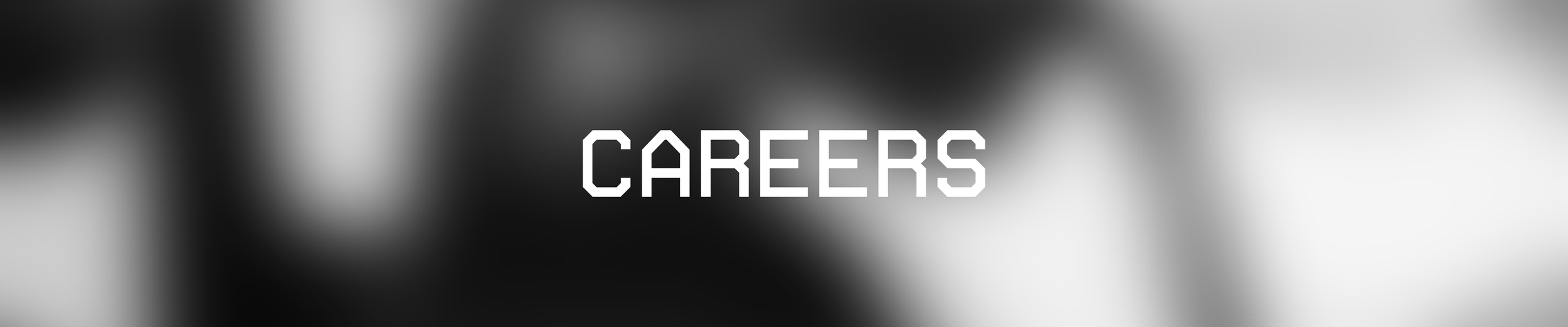SW CAREERS banner-01.png