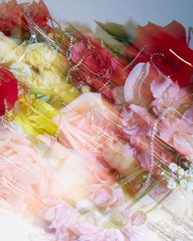 Send local flowers 💐 a still from our Radical Transparency Resort 2020 a collaboration with fellow Leo brother @charlieengman