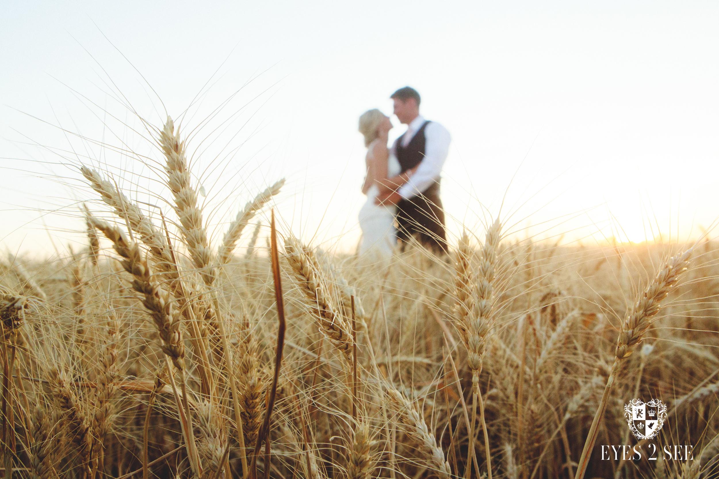 montana_wedding_kara_carson028.jpg