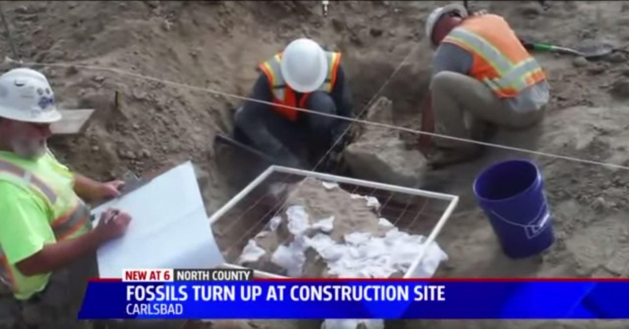 Screen shot of  Fox 5 News in San Diego, CA