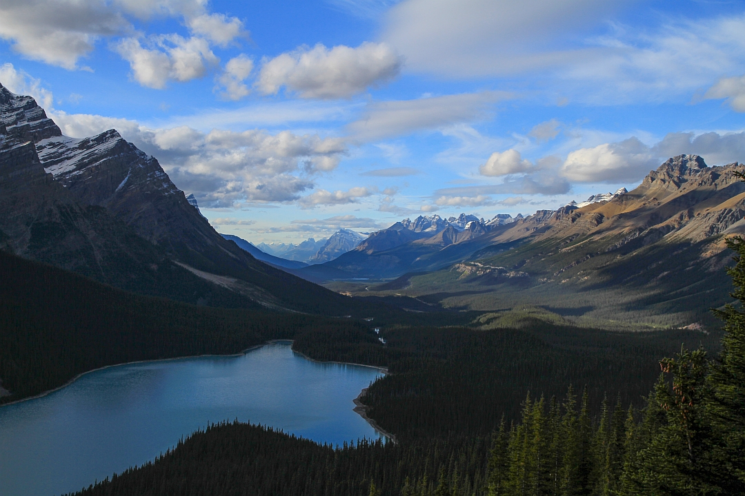 Evening at Peyto Lake