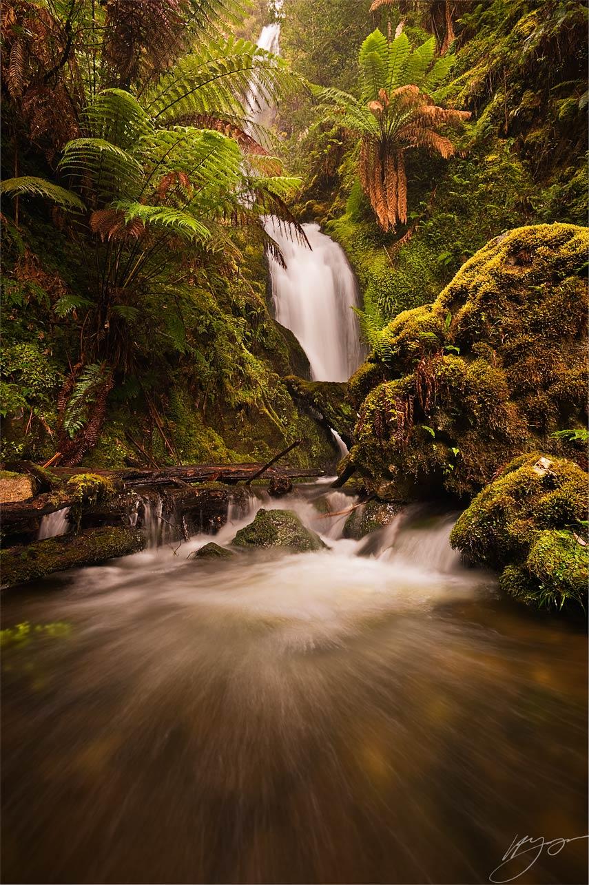 Quail Falls © Hillary Younger