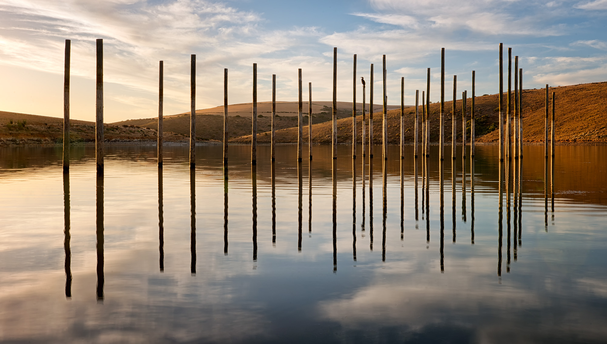 Greyton Dam Pole Dancing.jpg
