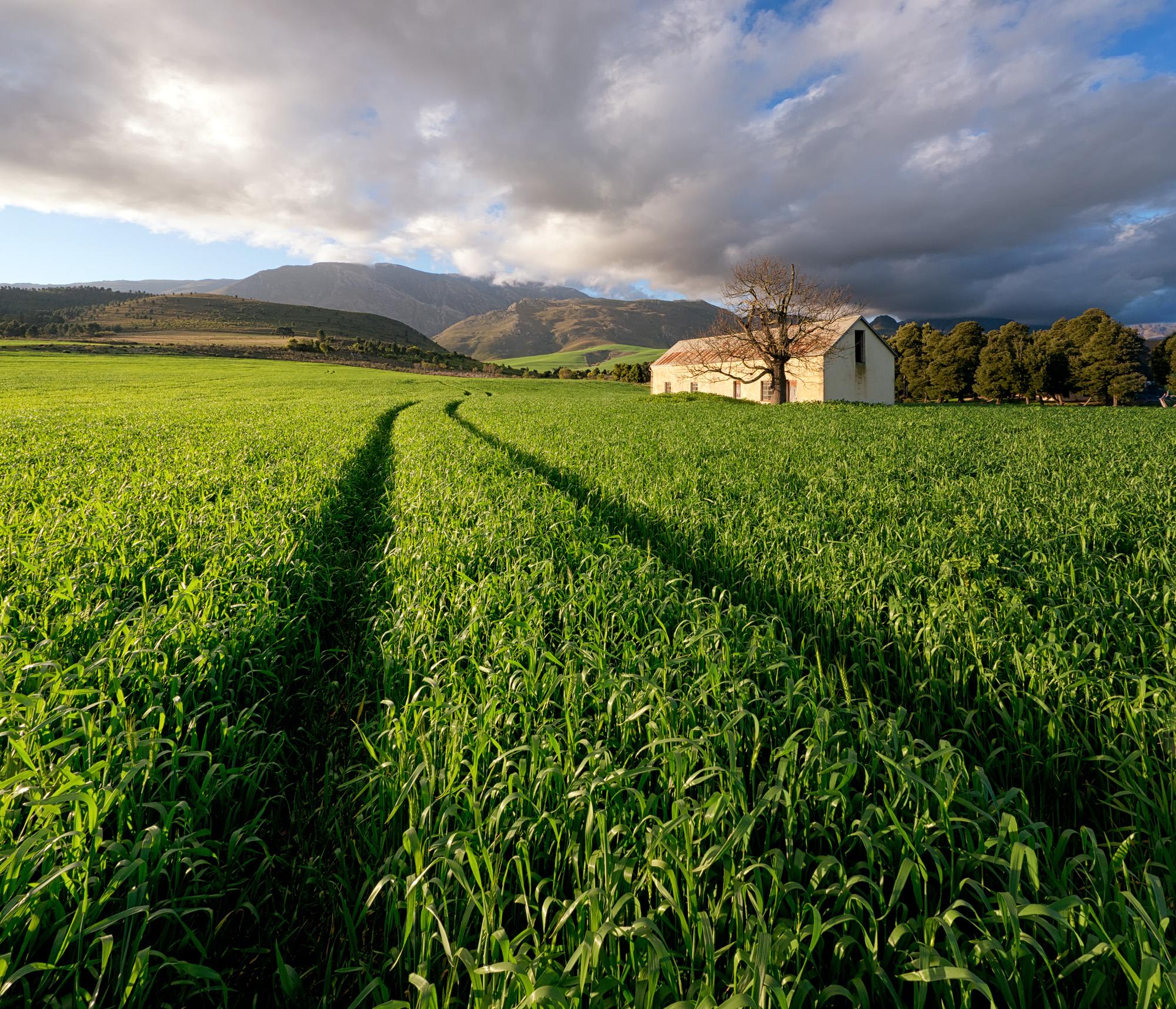 Greyton Farm Barn.jpg