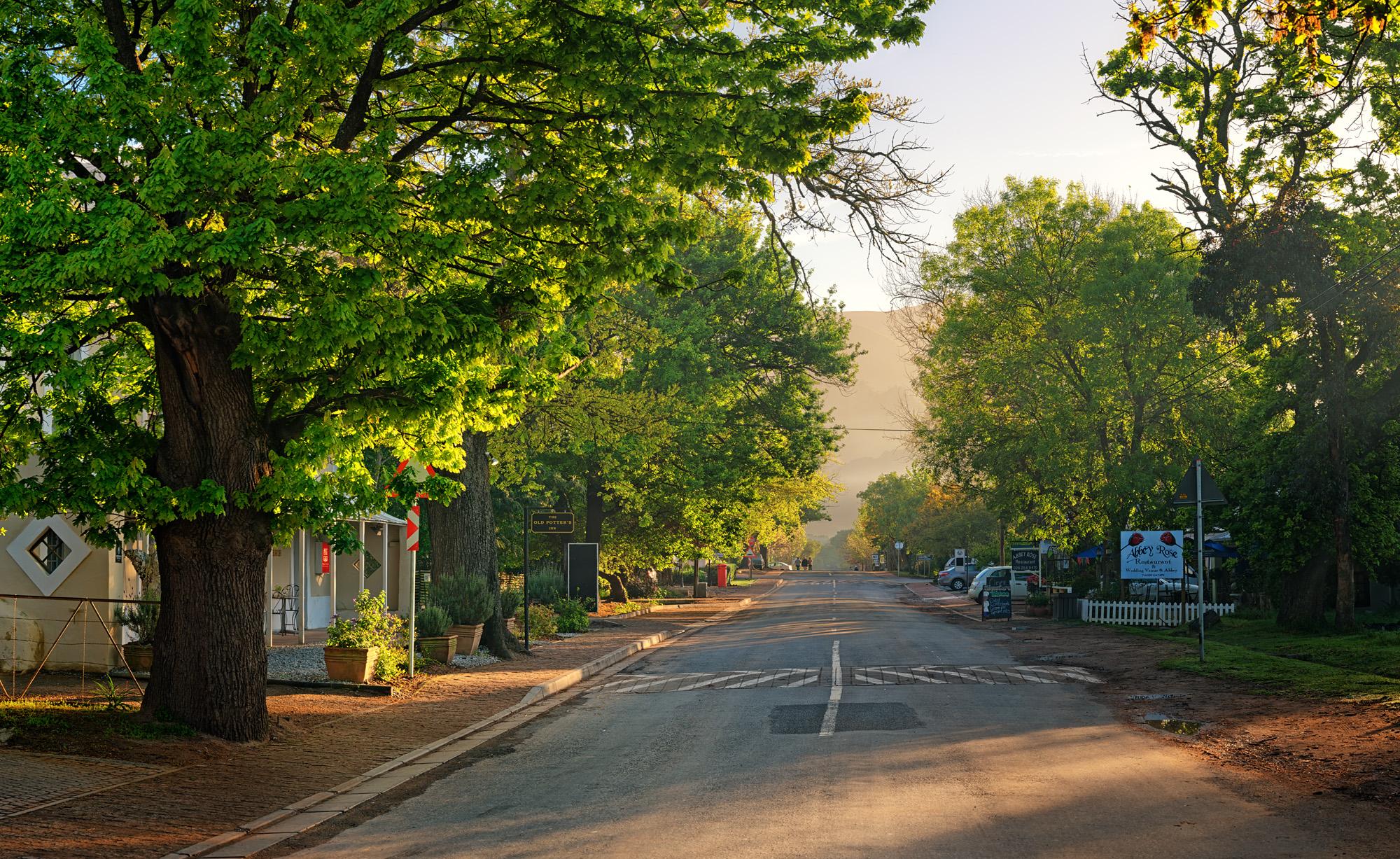 Greyton Main Road Sunrise.jpg