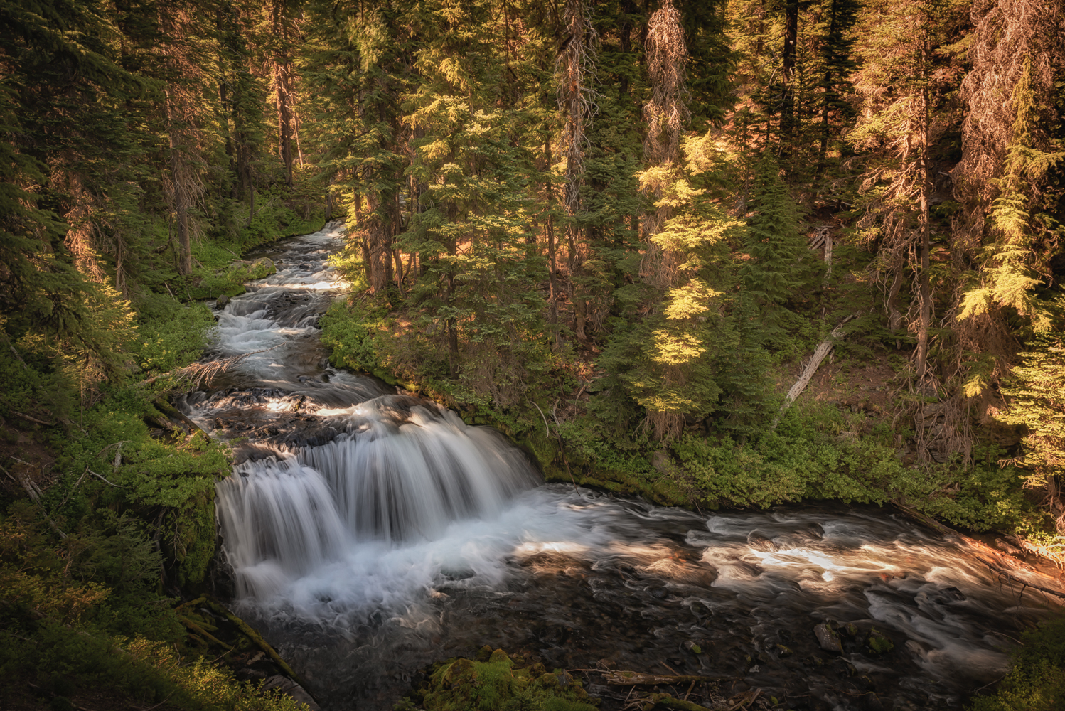 Fall Creek cascades in late afternoon light