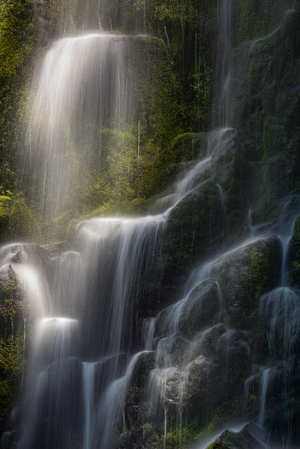 Thousand streams over basalt and moss: this pretty much sums up the magic of Proxy Falls.