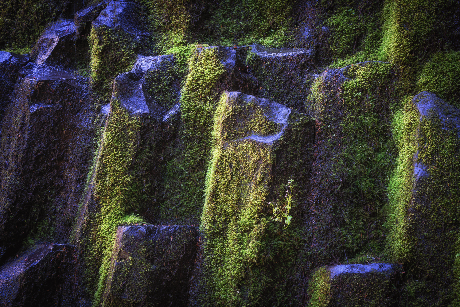 This might be my favourite photo from Oregon, a highly personal perspective of the basalt and moss next to Proxy Falls.
