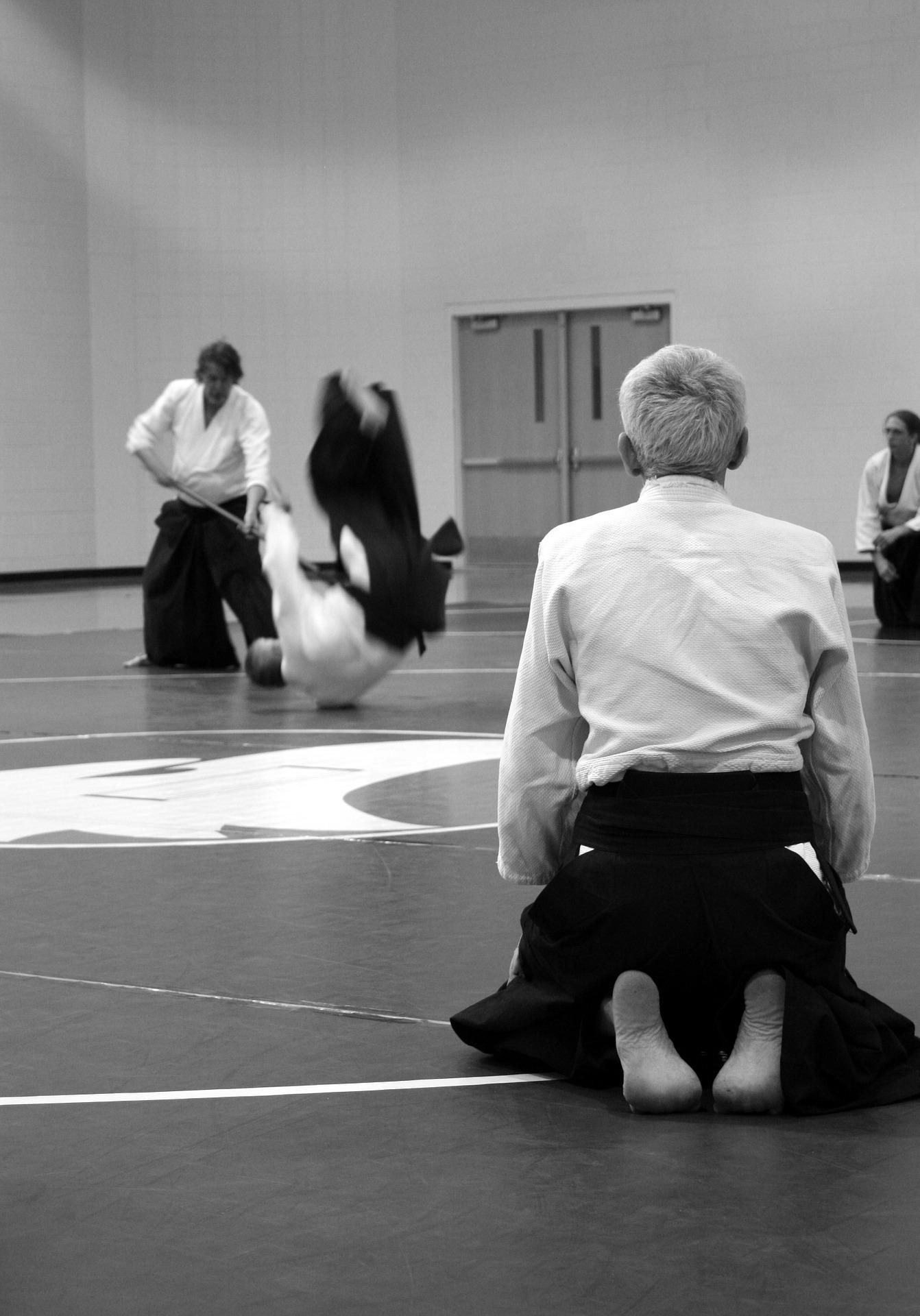 aikido-force.jpg