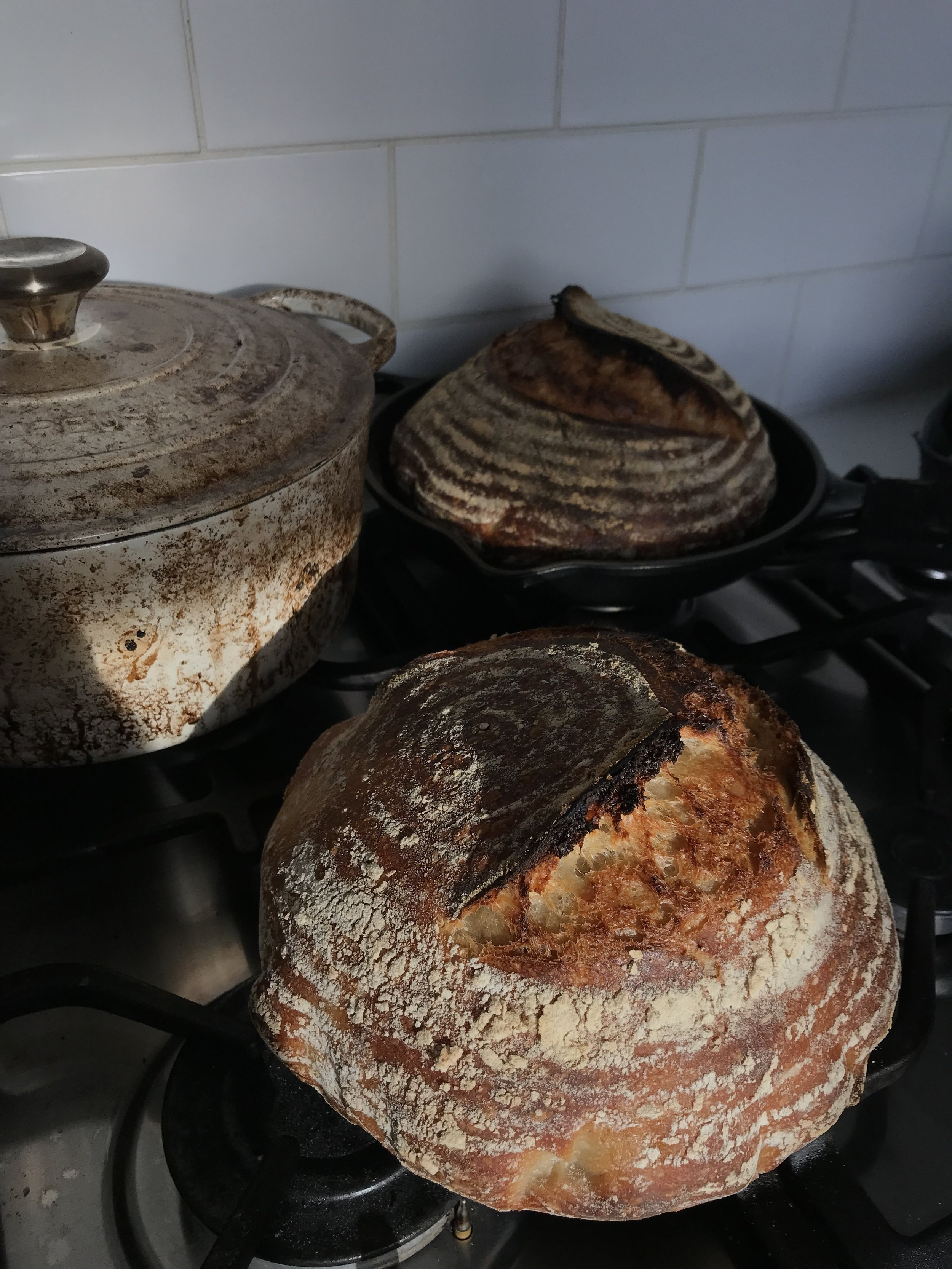Lou Dungate - Homemade Sourdough