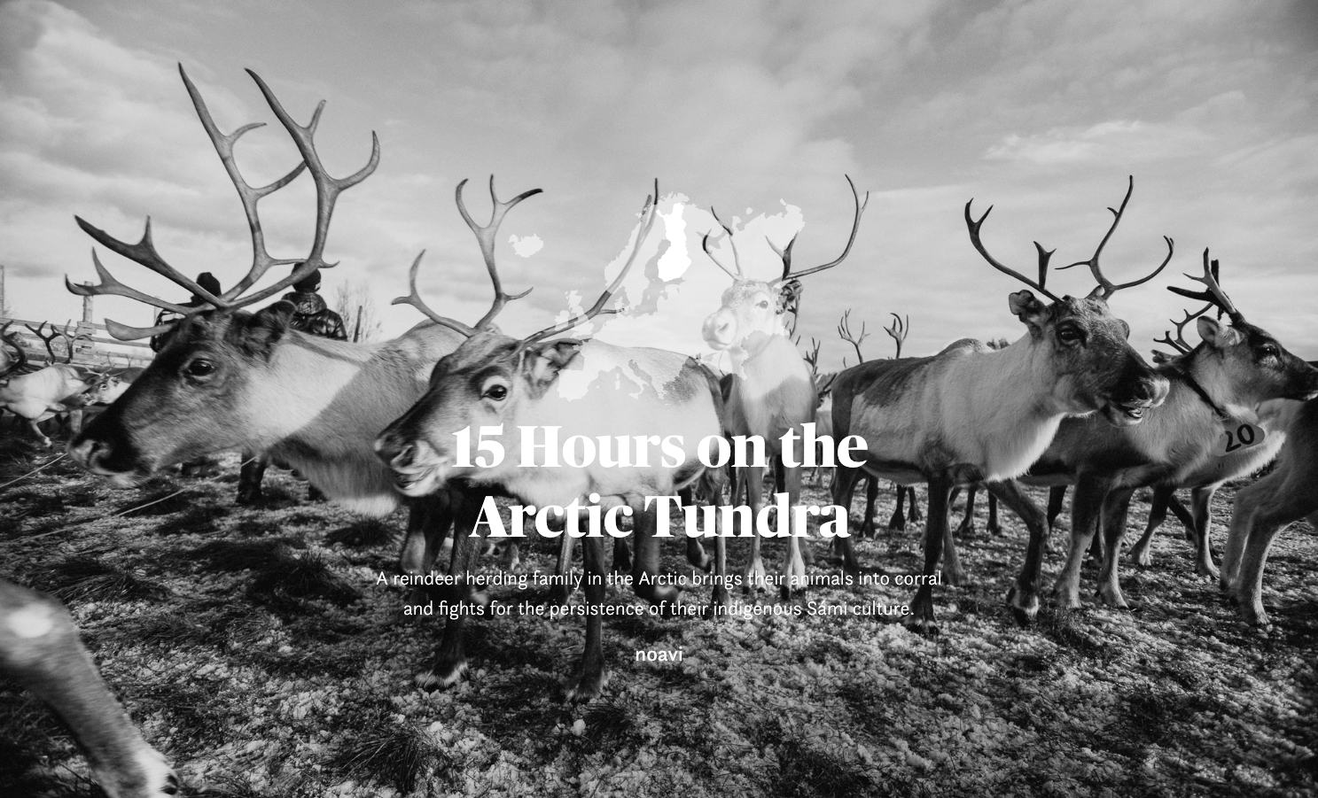 The Arctic, written and photographed by Noavi