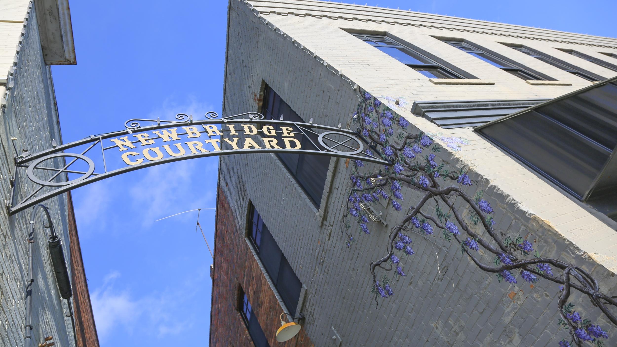 Wisteria at Newbridge Courtyard