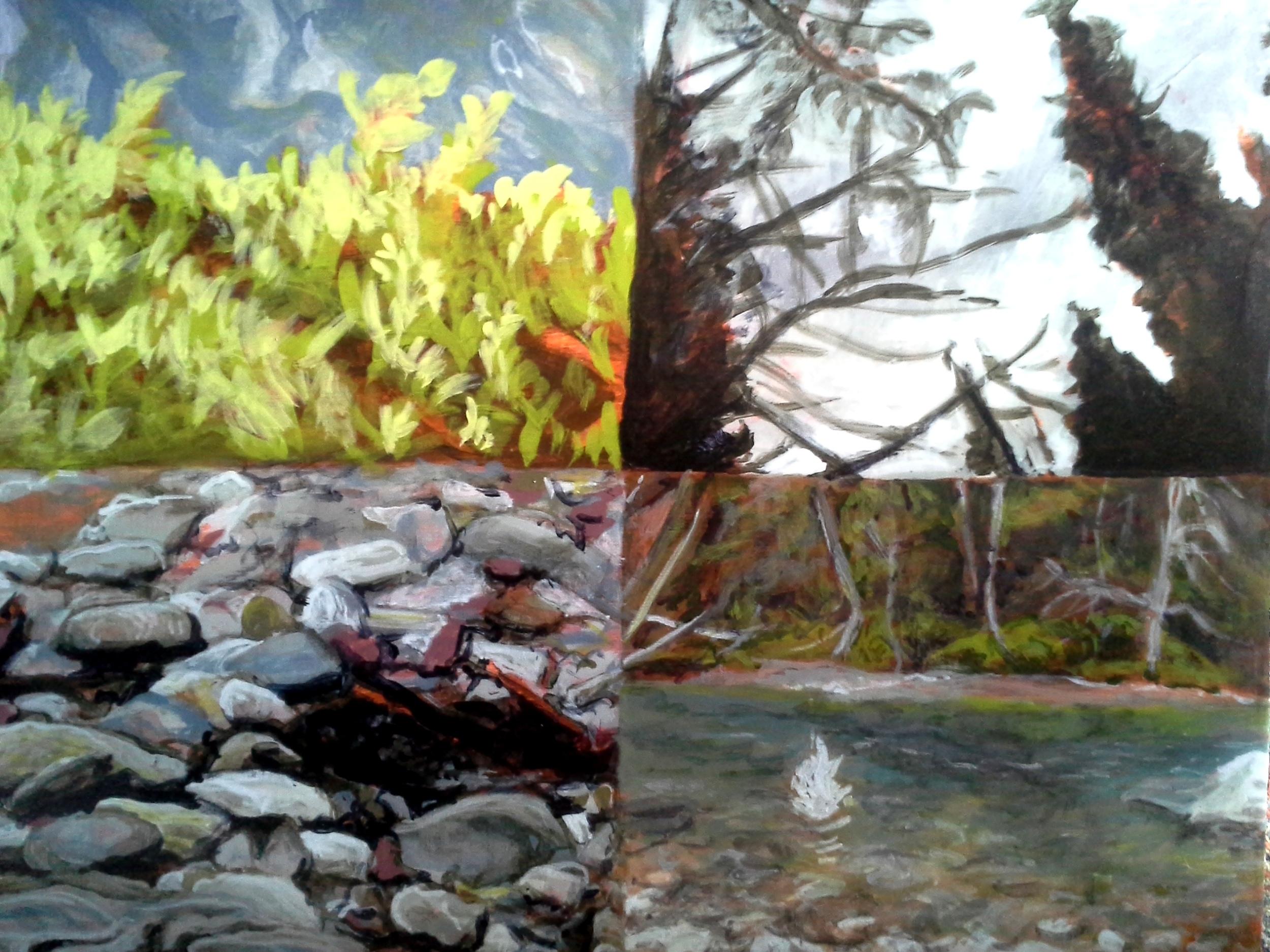 An Elemental Portrait - Lookout Creek