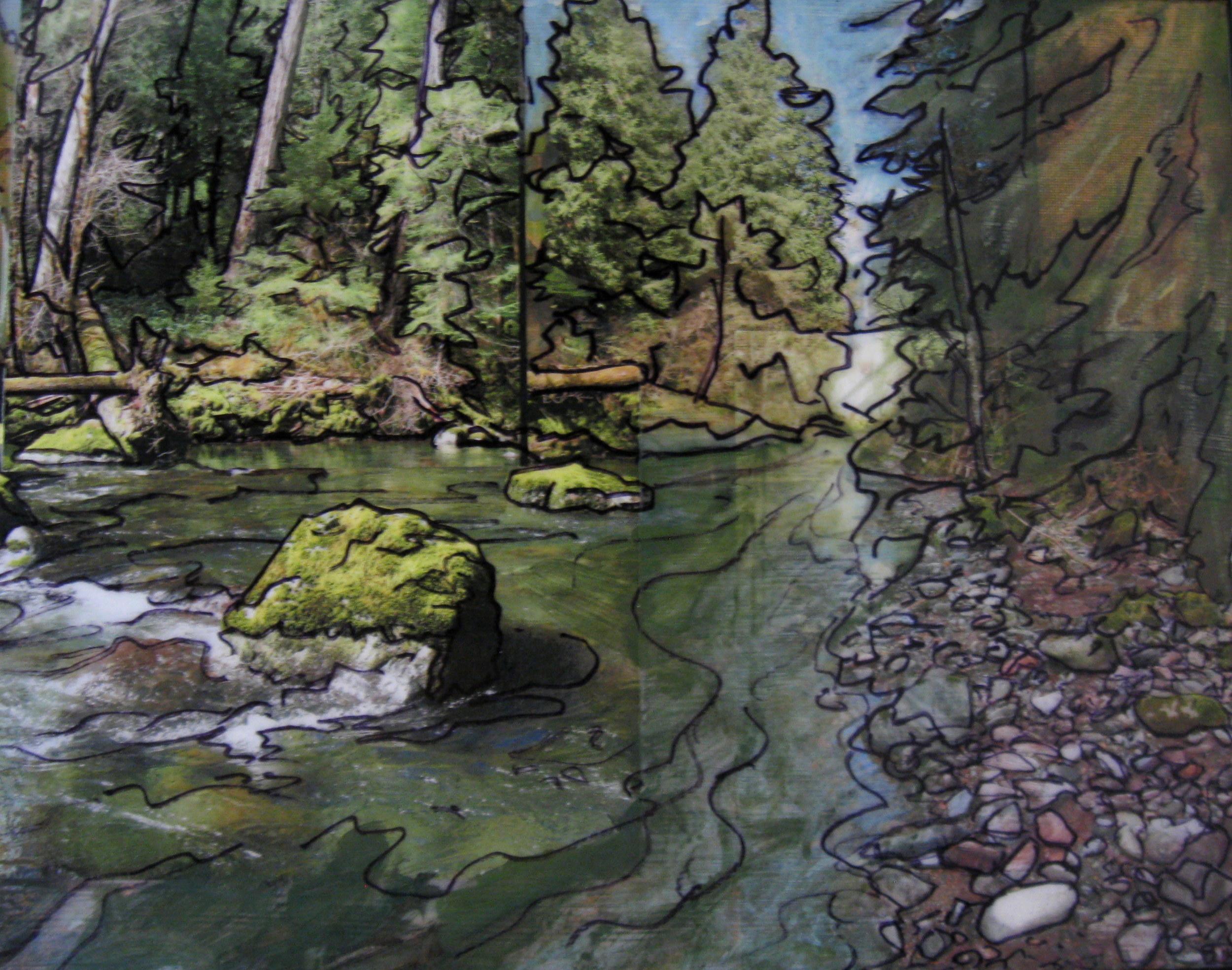 Lookout Creek