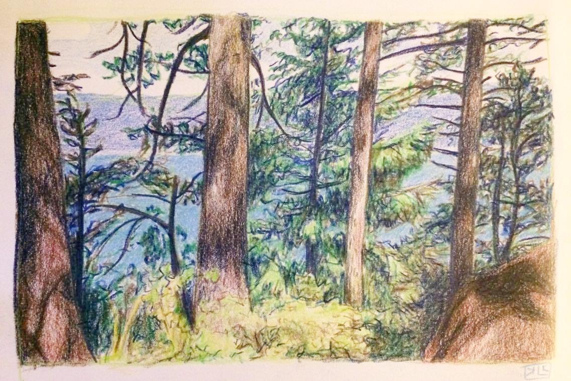 Trailside - Multnomah Falls